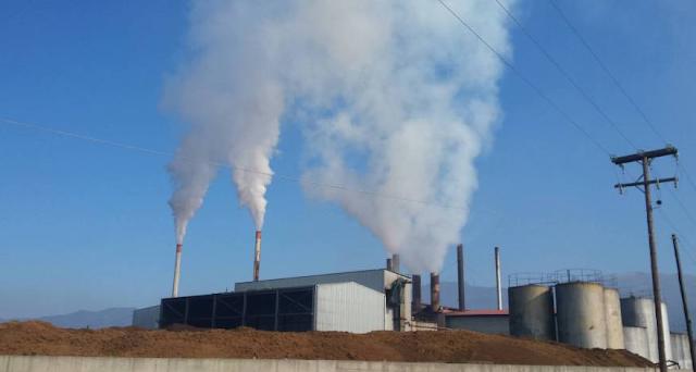 Περιφέρεια Πελοποννήσου: Αυστηροί έλεγχοι σε ελαιοτριβεία και πυρηνελαιουργεία