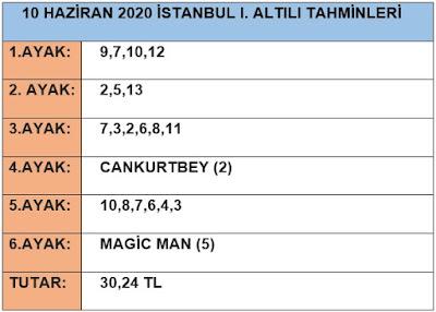 10-haziran-2020-istanbul-I.at-yarisi-tahminleri