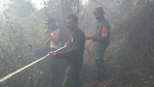 TNI Padamkan Lahan Kebakaran Seluas Empat Hektar