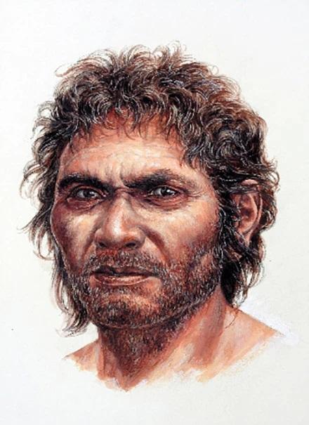 DNA study traces origins of Japanese to Palaeolithic Minatogawa people