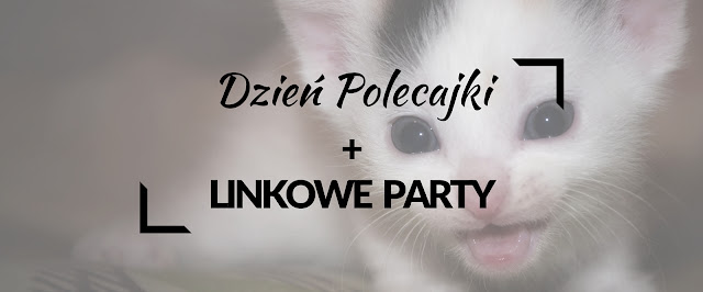 Dzień Polecajki| Linkowe Party| Linkowanie| Blog| Blogowanie| Ciekawe linki| najlepsze blogi| najlepsze teksty| najlepsze wpisy| koty| Chorzów| patriotyzm| pokusy| Grey| Zaniczka| Dizajnuch| Soczek Pomarańczowy| Pani Miniarurowa| Menele z Biura|