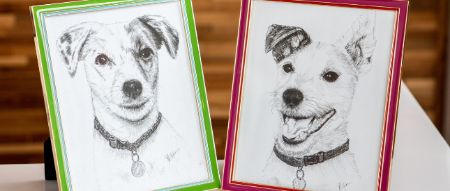 Framed photos of Marley and Lilly dogs