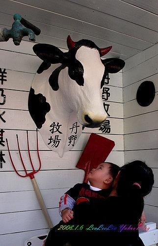 三峽清水祖師爺廟|丹野牧場|久年老店臭豆腐|長福橋園遊會