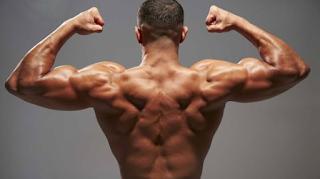 Cara Terbaik untuk Membangun Otot Sayap Anda
