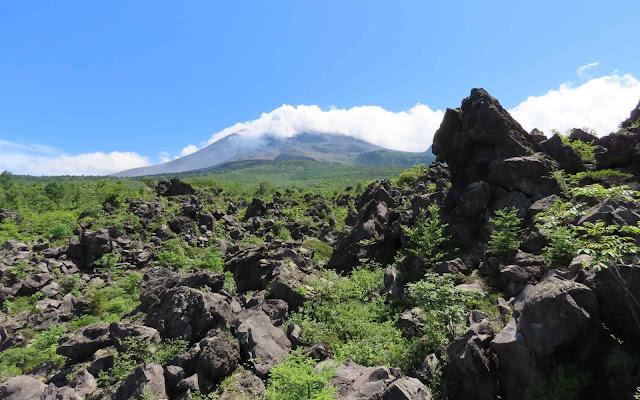 浅間山麓は溶岩だらけ