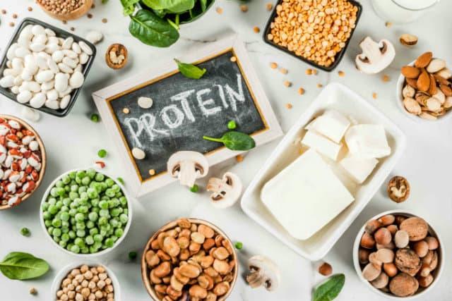 Chất đạm, protein có làm hại thận không ?