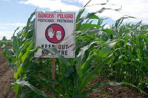 the dangers of using pesticides on our food View our page to search various because of the widespread use of agricultural chemicals in food publishes reports on pesticide use, health effects.