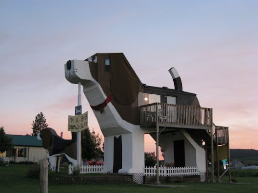 Unique Hotels In The United States The Dog Bark Park Inn