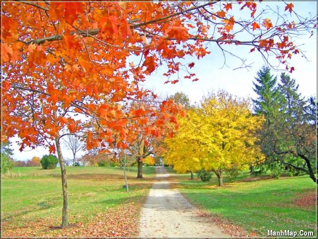 sắc màu mùa thu thật quyến rũ