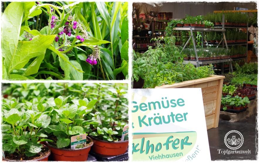 März 2017 - Topfgartenwelt – der Salzburger Food- und Gartenblog