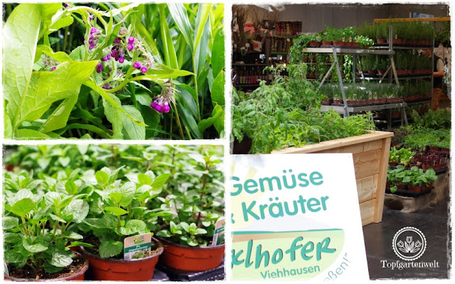 Gartenblog Topfgartenwelt Gartenmesse: Garten Salzburg 2017 Kräuter