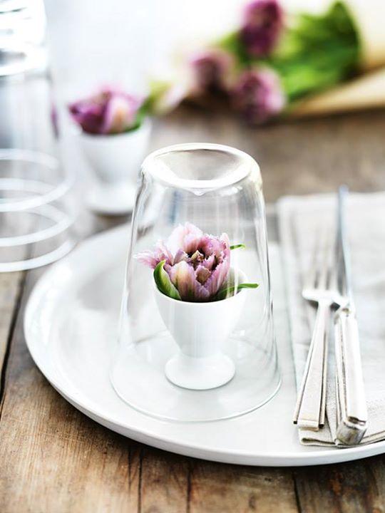 květina na stole