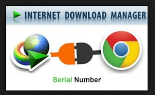 Internet Download Manager 6.33 Build 3