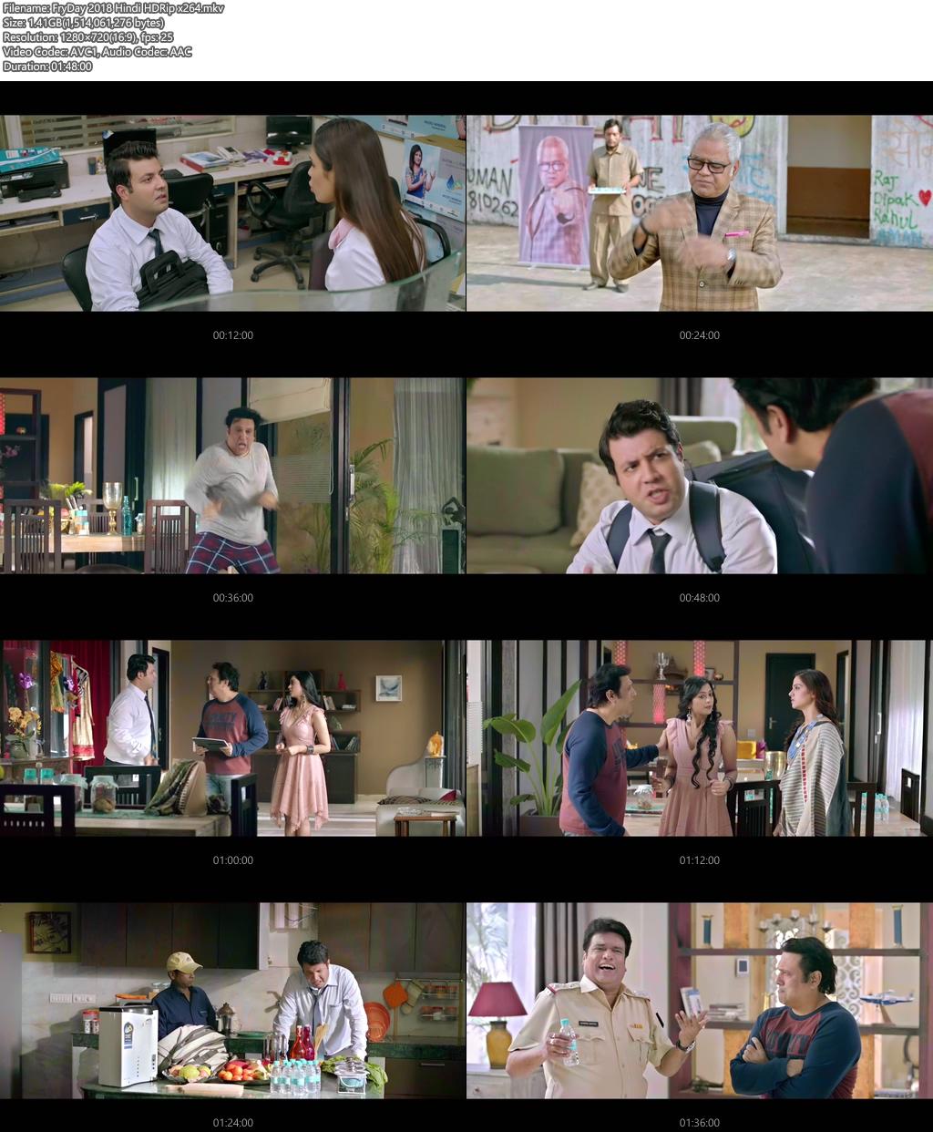 FryDay 2018 Hindi HDRip x264 | 480p 300MB | 100MB HEVC Screenshot
