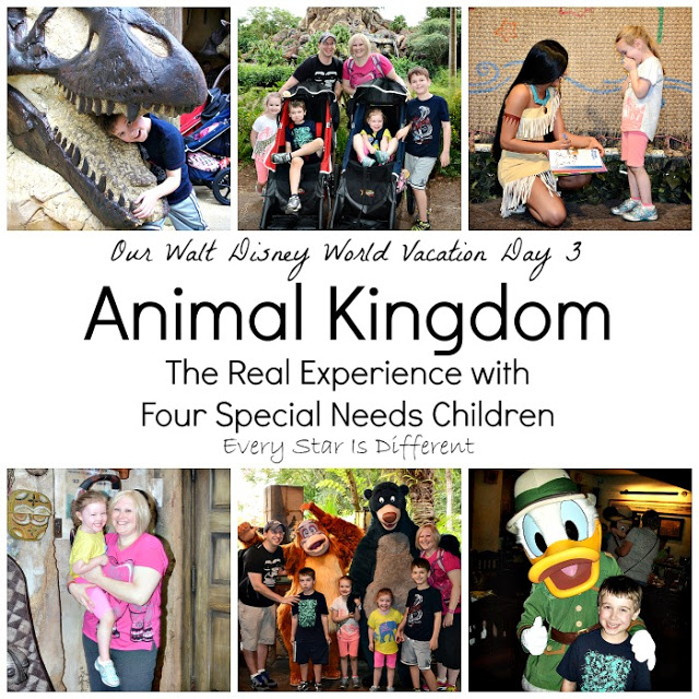 animal kingdom preschoolers the king and guard inspired resources for 51683