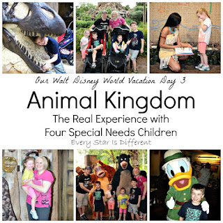 Animal Kingdom Walt Disney World:  The Real Experience with Four Special Needs Children