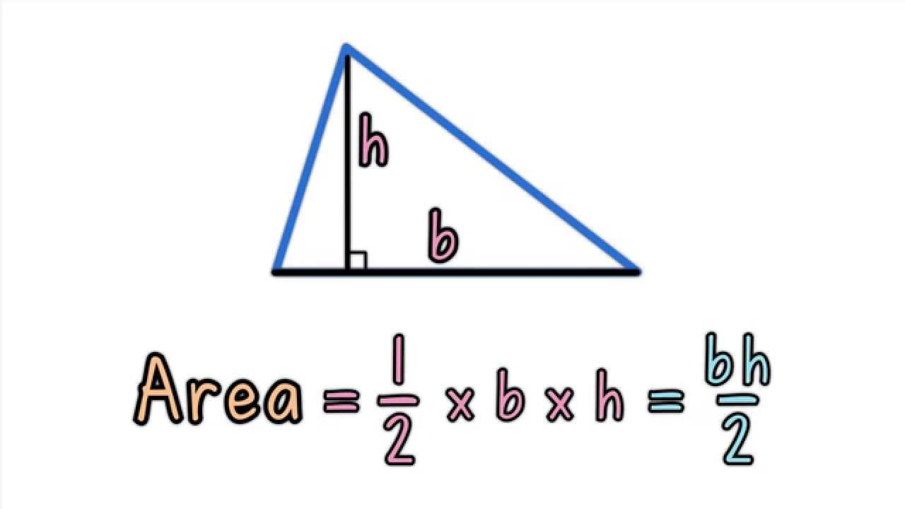 Java Program To Calculate Area Of Triangle