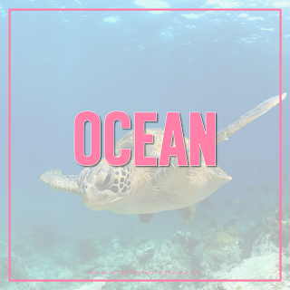 Ocean-Theme
