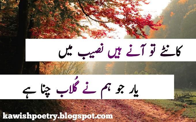 Romantic Poetry In Urdu For Lovers Images