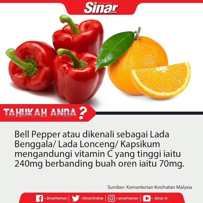 Keistimewaan Vitamin C Plus Shaklee Kepada Tubuh Badan
