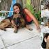 Πώς οι φωτογραφίες με τον σκύλο κατέληξαν σε ράμματα στο πρόσωπο