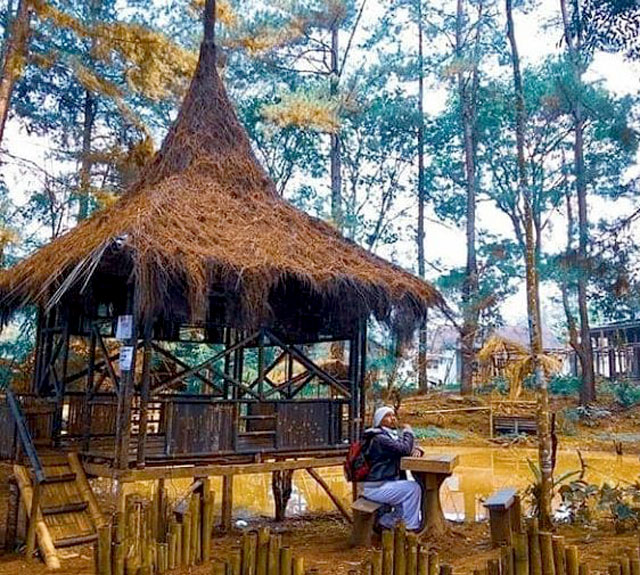 saung di pinus ecopark