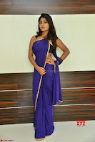 Actress Priya in Blue Saree and Sleevelss Choli at Javed Habib Salon launch ~  Exclusive Galleries 003.jpg