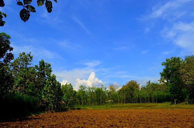 bluepackerid.com - Lasem : Tiongkok Kecil Di Tanah Jawa