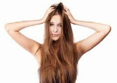 cara mengatasi rambut kering dan mengembang,rambut kering dan rontok,rambut kering secara alami,rambut kering dan kasar,rambut berketombe dan bercabang,kusut dan kusam secara alami, Rambut,