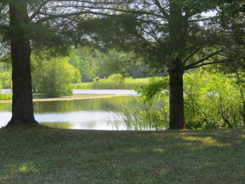 Faber Pond
