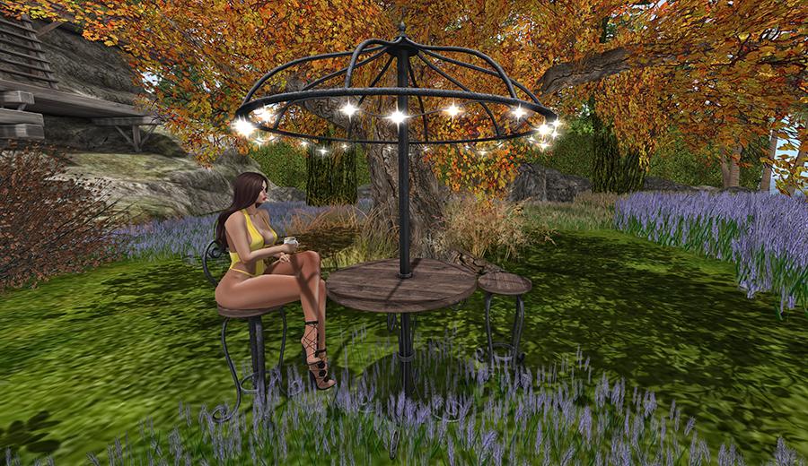 Cafe en el jardin