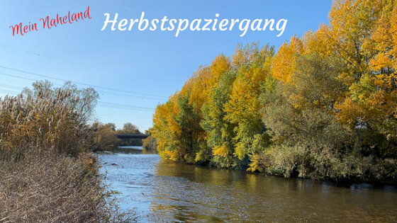 Herbstspaziergang an der Nahe bei Bretzenheim