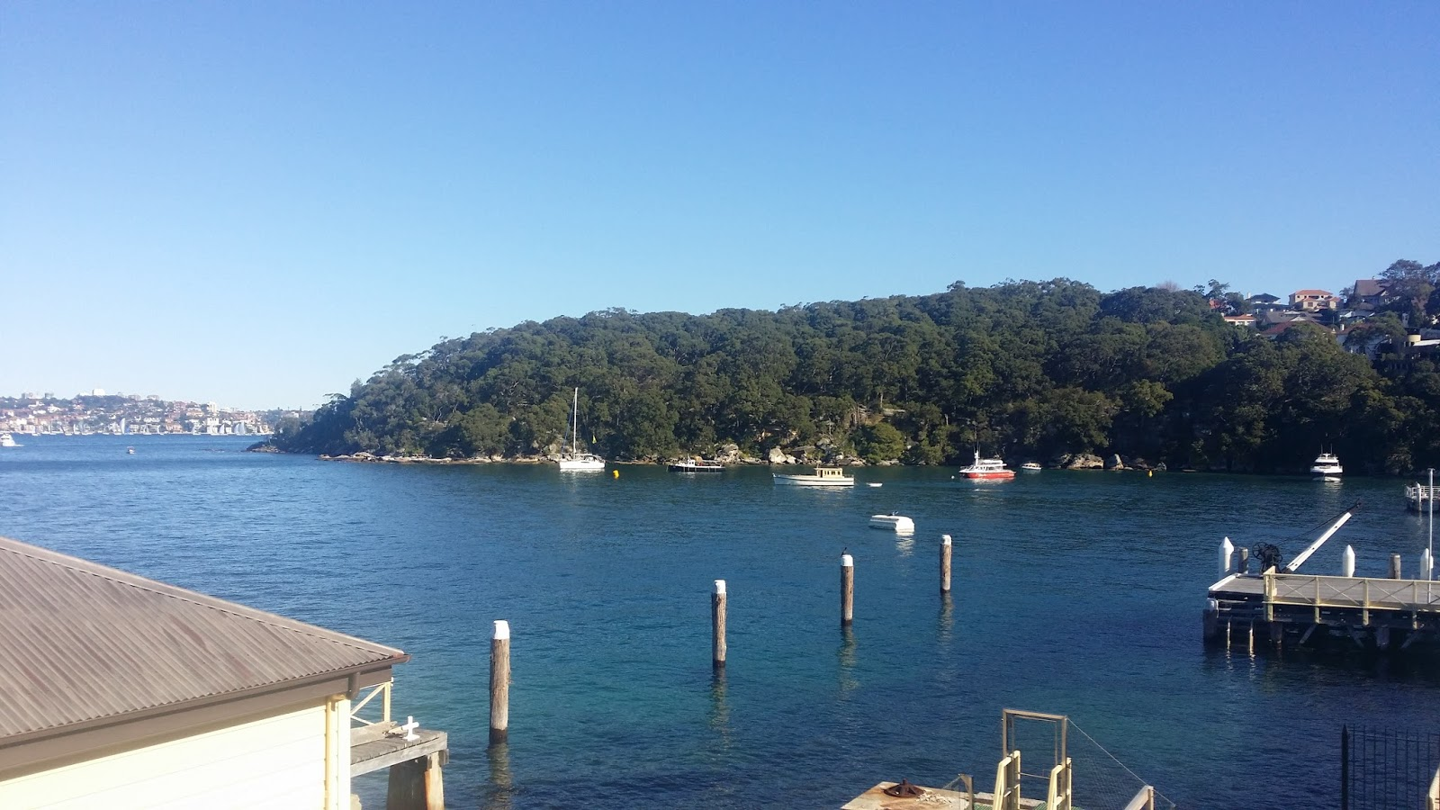 I Caught The  Bus From Opposite The Hmas Penguin Naval Base Back To Mosman And Connected Onto The Balmoral Beach Bus I Arrived At Balmoral Beach At