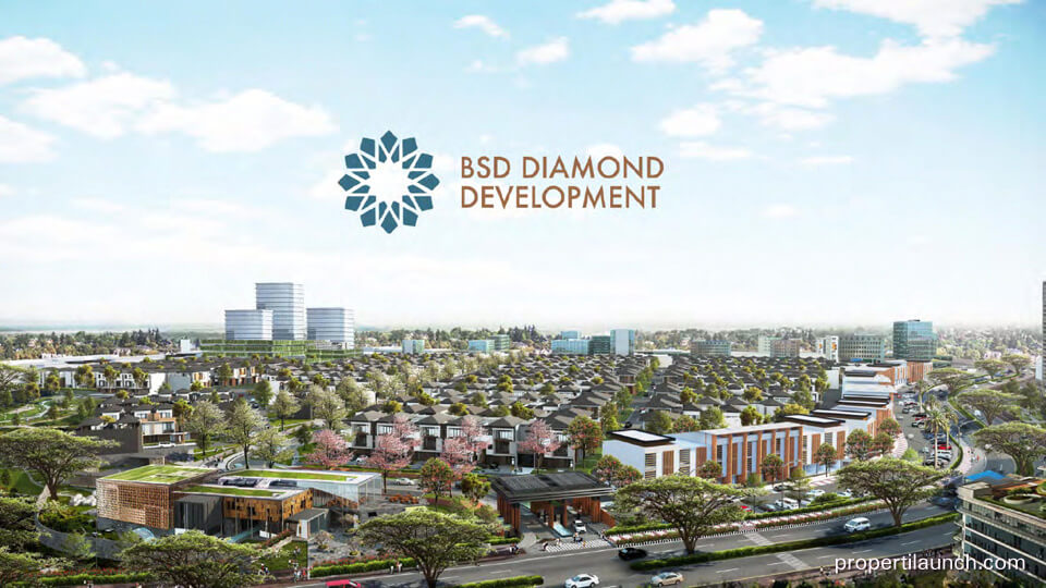The Zora BSD Diamond Development