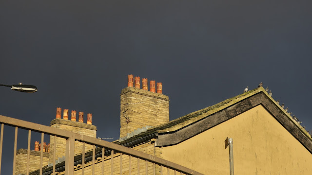 Pigeons on gable end of roof with lots of chimneys and chimney pots, road railing and street light against dark sky.