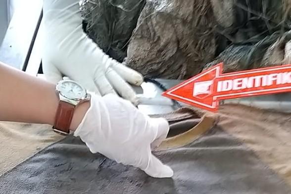 Sosok Mayat di Peurelak Korban Pembunuhan Diduga Warga Kota Langsa