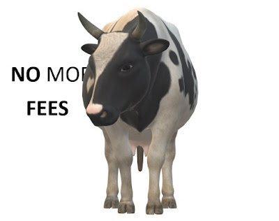 A bull stands looking towards the reader, to the left of the black and white bull are the words No More Fees.