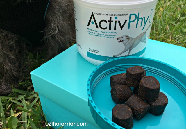 ActivPhy soft chews supplement for dogs