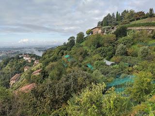 Gardens below Via Orsarola.