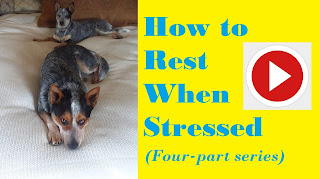 Rest When Stressed on tammytalk.com and Tammy Talk TV