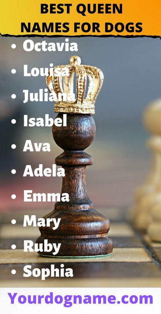 queen dog names