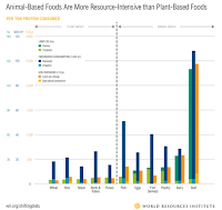 The yellow and orange bars on the graph illustrate the greenhouse gas emissions differences involved in different types of food production and related land use changes. (Credit: World Resources Institute) Click to Enlarge.