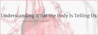 Пульс, Давление, Дыхание - что нам говорит наше тело