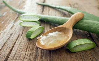 Aloe Vera Para Eliminar Las Estrias