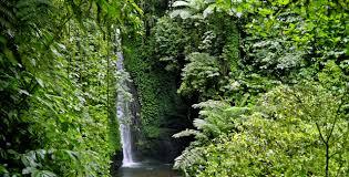 tempat mistis di lombok - Air Terjun Jeruk Manis
