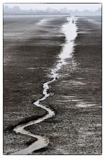 Víz a szántóföldön