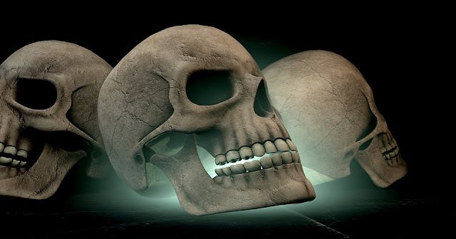Skull- Diagrammatic Radiographic Analysis Of Six Views Of Skull
