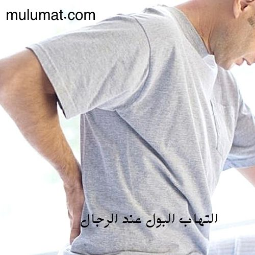 التهاب المسالك البولية عند الرجال وعلاجه بالأعشاب