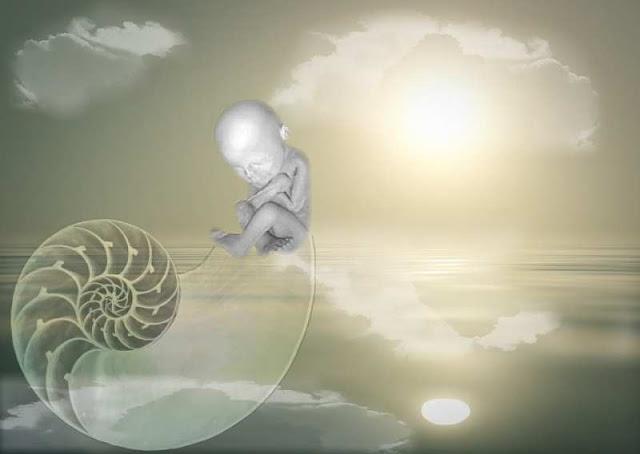 1/400 triệu tỷ là xác suất bạn được sinh ra trên thế giới này