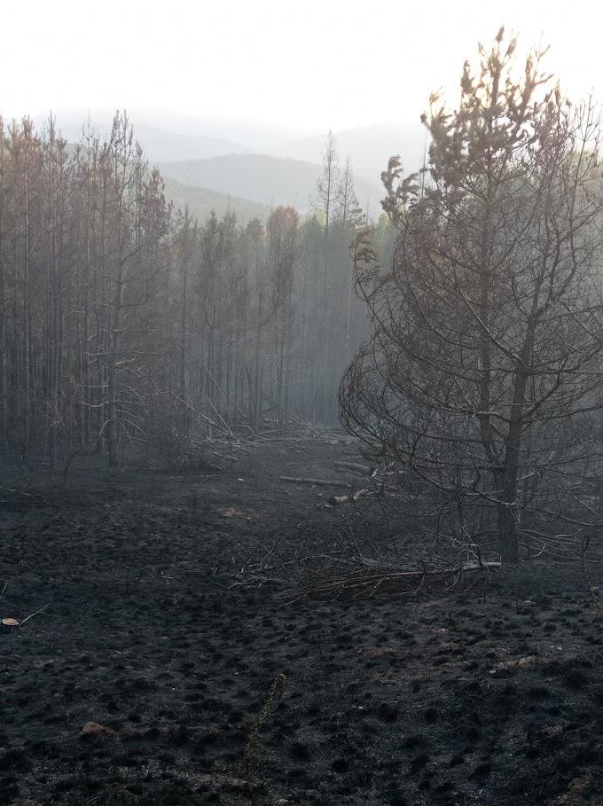 Последствията от пожара в село Ломница